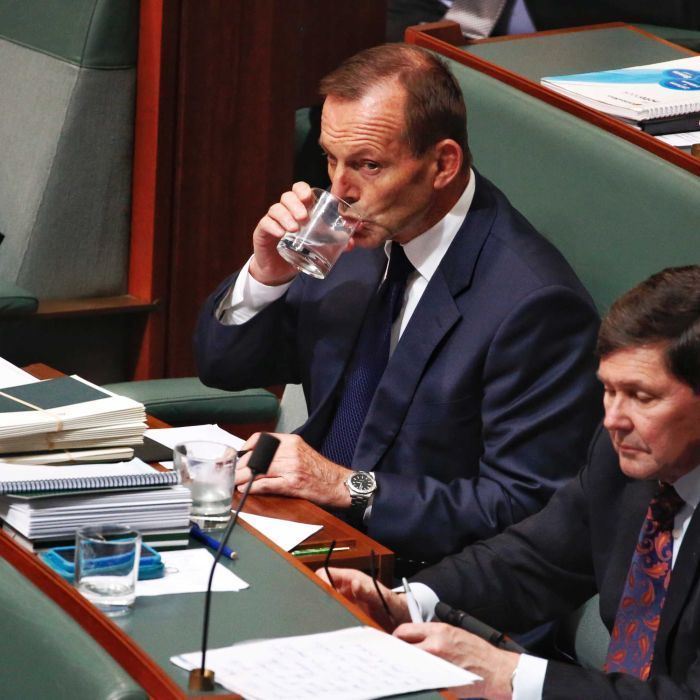 Abbott morphs from leadership aspirant into political assassin