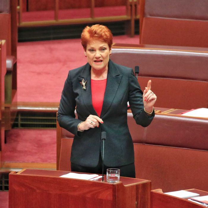 Pauline Hanson's autism comments raise questions about education resources - ABC Online