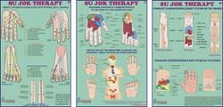08  CHARTS Acupressure Natural Care System