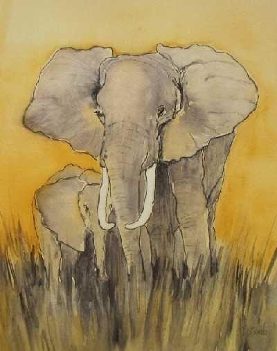 Elefantee