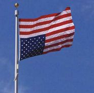 high to 150foot high  Check out our Tornado Flagpoles with flagged