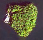 petra island 1