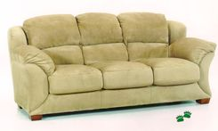 Couch removal and Furniture disposal for the Vancouver area