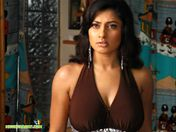 Malavika Desktop Wallpaper (29299) | Bollywood Celebrities Wallpapers