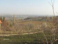 Novi Sad, Ledinci, prodaja, plac na Torinama, 9 ari, Nekretnine Novi