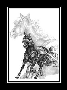 This detailed drawing of a Standardbred harness race horse was created