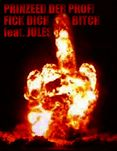 Thema: PRINZEED DER PROFI  FICK DICH BITCH feat. JULES (Freetrack)