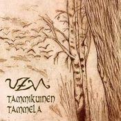 Tammikuinen Tammela by UZVA album cover