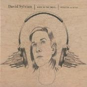 Died In The Wool: Manafon Variations by SYLVIAN, DAVID album cover