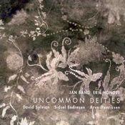 David Sylvian with Jan Bang, Erik Honoré, Sidsel Endresen and Arve Henriksen: Uncommon Deities by SYLVIAN, DAVID album cover