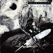 Secrets Of The Beehive  by SYLVIAN, DAVID album cover