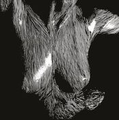 Self Preserved While The Bodies Float Up by OCEANSIZE album cover