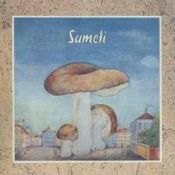 Sameti by SAMETI album cover
