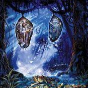 Lepidoptera  by RAK album cover