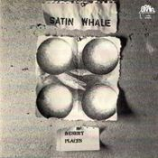Desert Places by SATIN WHALE album cover