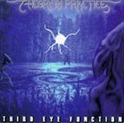 Third Eye Function by THEORY IN PRACTICE album cover