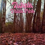 Think Pink by TWINK album cover