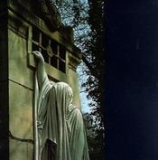 Within The Realm Of A Dying Sun by DEAD CAN DANCE album cover