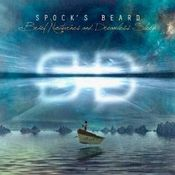 Brief Nocturnes and Dreamless Sleep by SPOCK'S BEARD album cover
