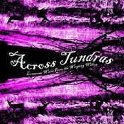 Lonesome Wails From The Weeping Willow by ACROSS TUNDRAS album cover