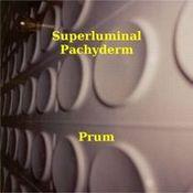 Prum by SUPERLUMINAL PACHYDERM album cover