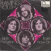 Guide Me, Orion / From Now On by FLAMING YOUTH album cover