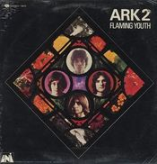 Ark 2 by FLAMING YOUTH album cover