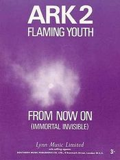 From Now On / Space Child by FLAMING YOUTH album cover