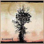 Myxomatosis by MYXOMATOSIS album cover