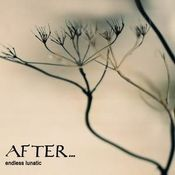 Endless Lunatic by AFTER... album cover