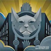 Now We Have Light by SANGUINE HUM album cover