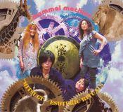 Mitsugi (Esoteric Rituals) by MAMMAL MACHINE album cover