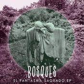 El Fantasma Sagrado by BOSQUES album cover