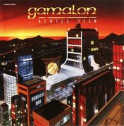Aerial View by GAMALON album cover