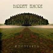 Woodlands by BARRETT ELMORE album cover