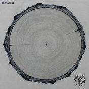 Den Internasjonale Bronsealderen by TUSMØRKE album cover