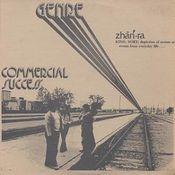 Commercial Success by GENRE album cover