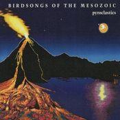 Pyroclastics by BIRDSONGS OF THE MESOZOIC album cover