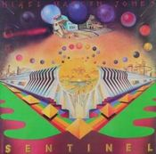 Sentinel & the Fools of the Finest Degree by JONES, NIGEL MAZLYN album cover
