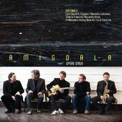 Opere Omus by AMIGDALA album cover