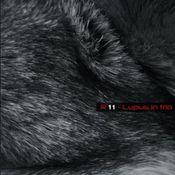 Lupus In Trio by R-11 album cover