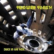 Duck In The Box by FLOWER FLESH album cover
