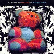 Testing to Destruction  by CROSS, DAVID album cover