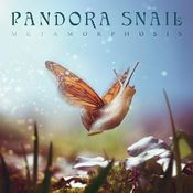 Metamorphosis by PANDORA SNAIL album cover