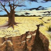 Fortunate Observer Of Time by FROGG CAFE album cover