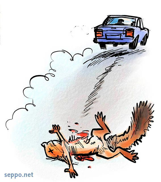 Roadkill Cartoons