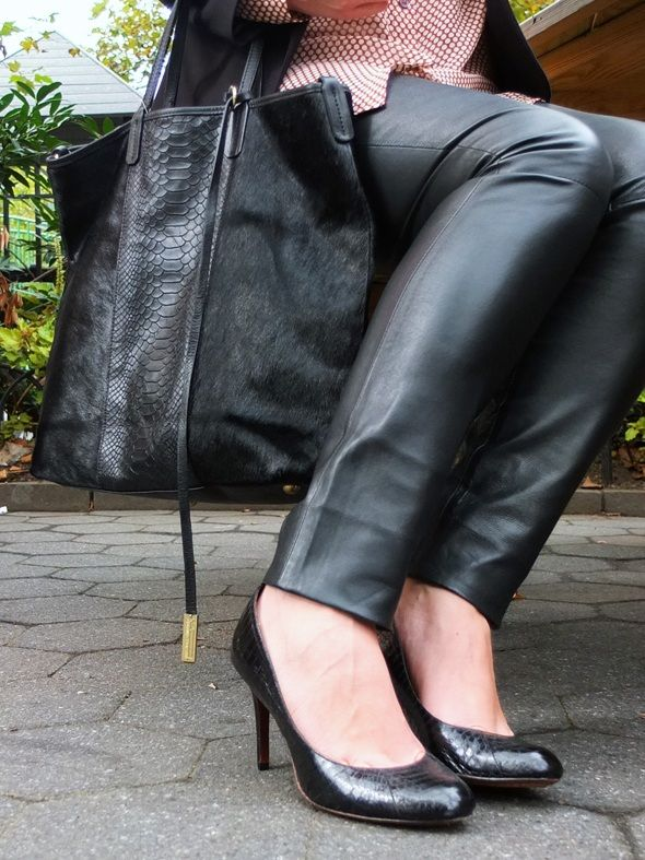 Love In Leather Pants M4v