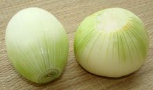 The Maui Onion has a more oblong shape (like a football) compared to