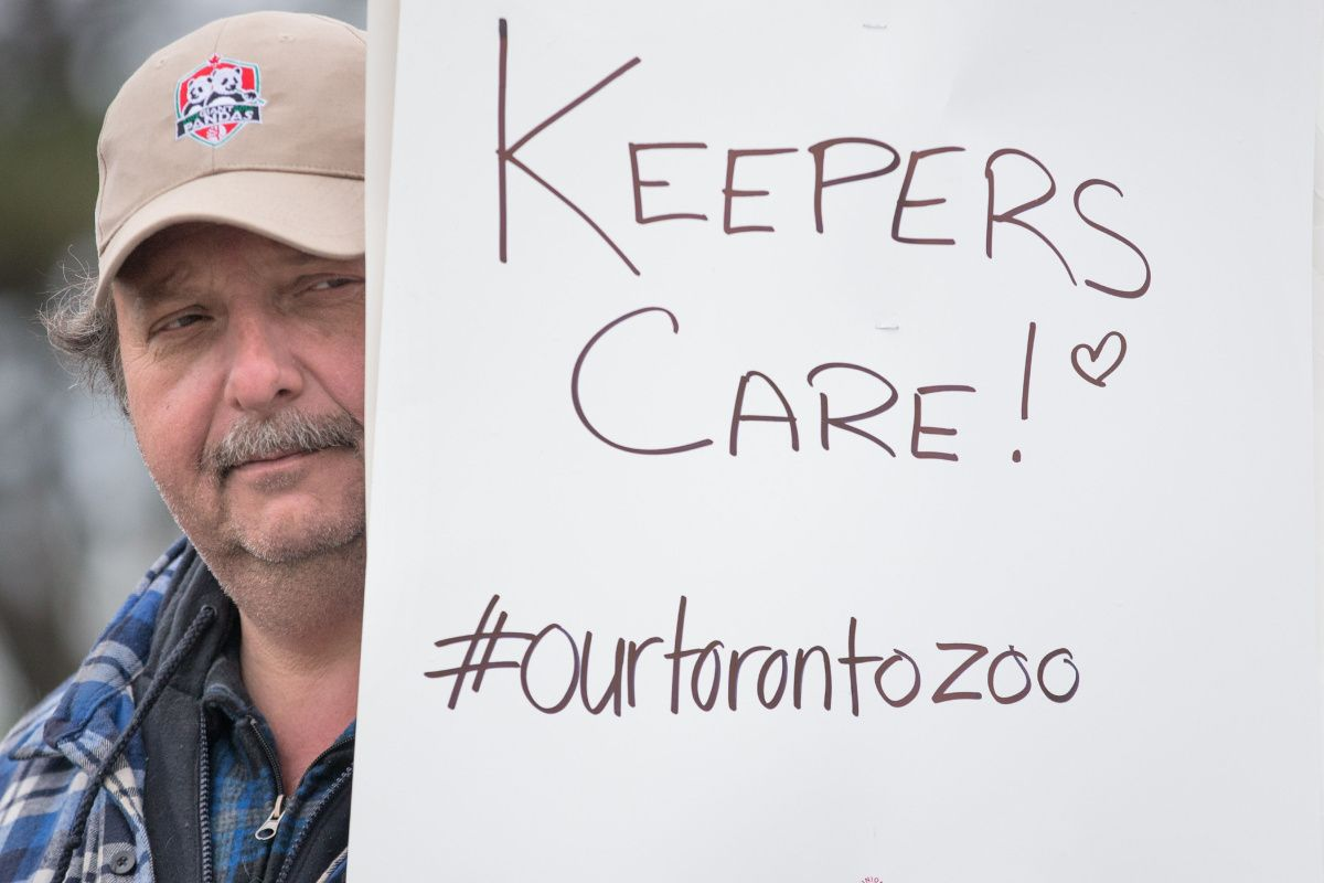 Why bother re-opening Toronto Zoo?