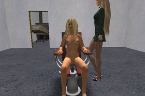 Second Life Dolcett: a Record of Virtual World Sex Torture Role